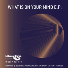 "INDEEP003LTD What is on your Mind EP ""10 Years InDeep'n'Dance Records"""