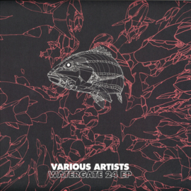 Various Artists - Watergate 24 EP - WGVINYL49 | Watergate