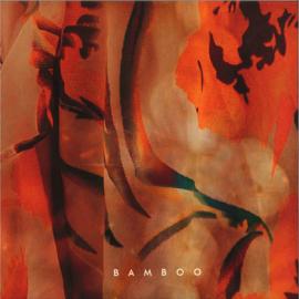 LADS - Bamboo - NWS025 | Nie Wieder Schlafen Records