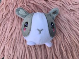squishamal Bunny