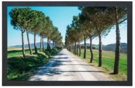 MAV Display touch 19 inch Projected capacitive