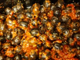Bruschetta olijven zwart