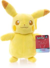 Pikachu Tonal Pluche Knuffel 20 cm Special Edition-Collectors Item