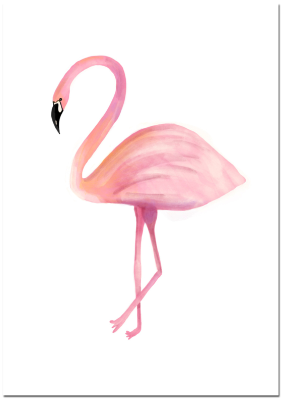 Dierenposter Flamingo