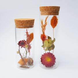 "Droogbloemen   Set cilinder ""autumn"""