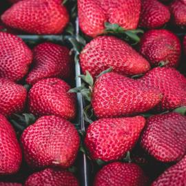 Aardbeien Import bak á 250gram