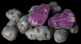 Truffel aardappel kg
