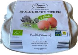 Biologische eieren doos a 6 stuks vers