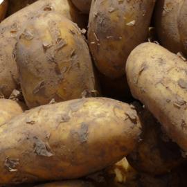 Eigenheimer aardappel 2.5KG zak, zeer kruimig