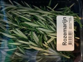 verse rozemarijn bakje/zakje