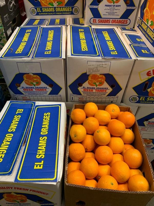 pers sinaasappel doos (15kg)