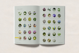 BLOEMBOLLEN (e-)book