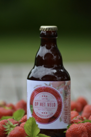 Aardbei bier - Belgisch artisanaal bier - fruitig  - 6,5% vol (33 cl)