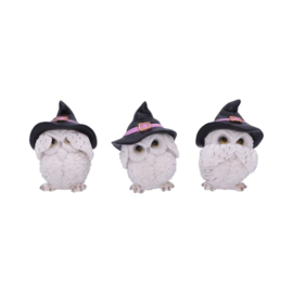 Beeld - Three Wise Feathered Familiars 9cm