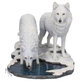 Beeld - Warriors Of Winter 35cm