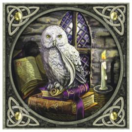 Wenskaart + Envelop - Snowy Owl