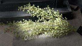 Bosje olijventakjes  groen 41cm