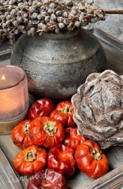 Mini pumpkin 50 gram