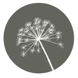 muurcirkel olijfgroen berenklauw 30 cm