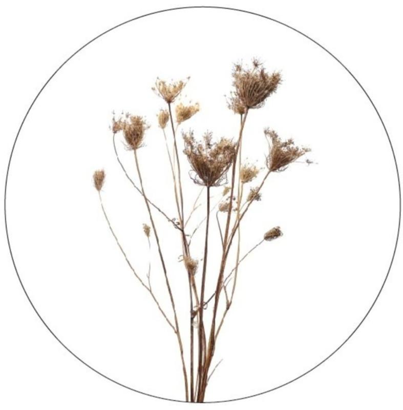muurcirkel gedroogde bloemen 40cm