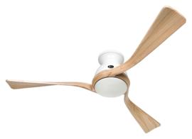 Plafond ventilator Eco Regento WE-NT