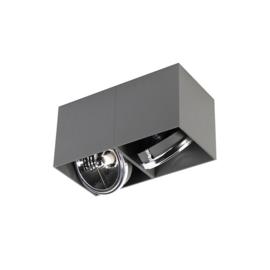 Plafondspot  Box rechthoekig, 2-lichts grijs incl. licht bron