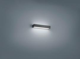 Wandlamp Theia led, mat zwart met acryl glas 30 cm