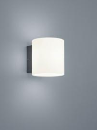 Buitenlamp Doon led, graphit IP54