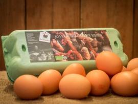 Abonnement 10 bio eieren