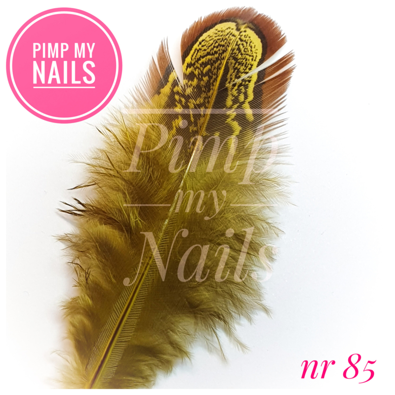 Pimp My Nails 085 veertje bruin met geel