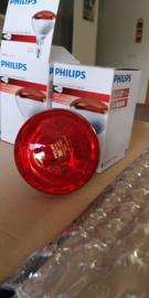 Warmtelamp voor Asoka (Spanje)