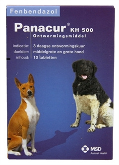 Panacur Hond / Kat 500 MG 10 tabletten