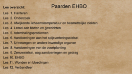 CURSUS PAARDEN EHBO