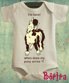 When does my pony arrivé?