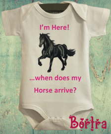 When does my horse arrive