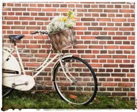 Zweedse fietsmand