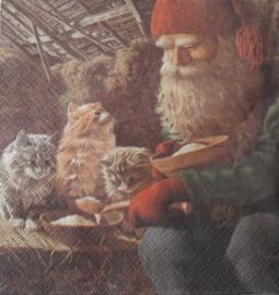 Servetten 'tomte met boskatten'