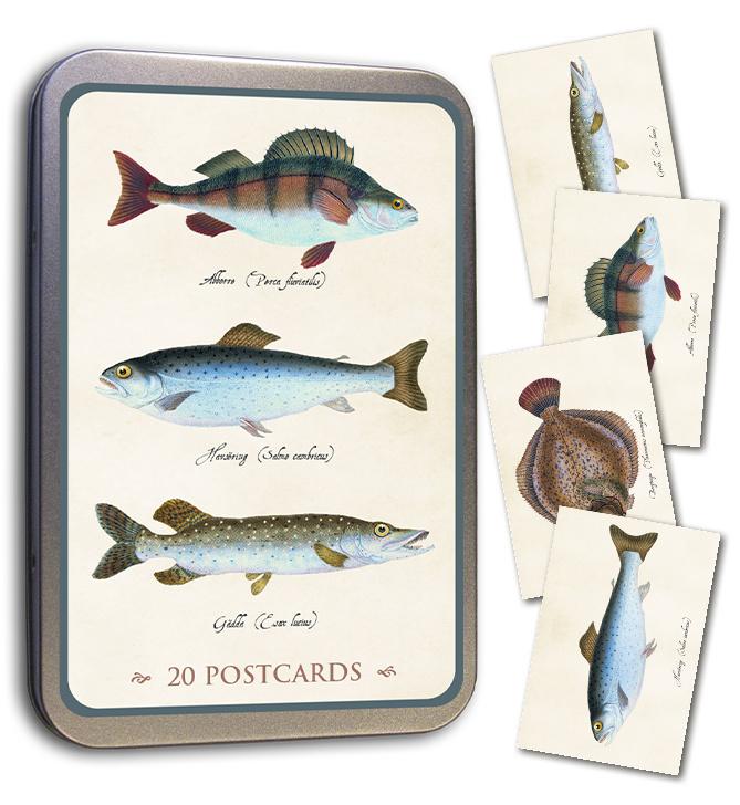 Blik met 20 kaarten (10 x 15 cm) 'vissen'