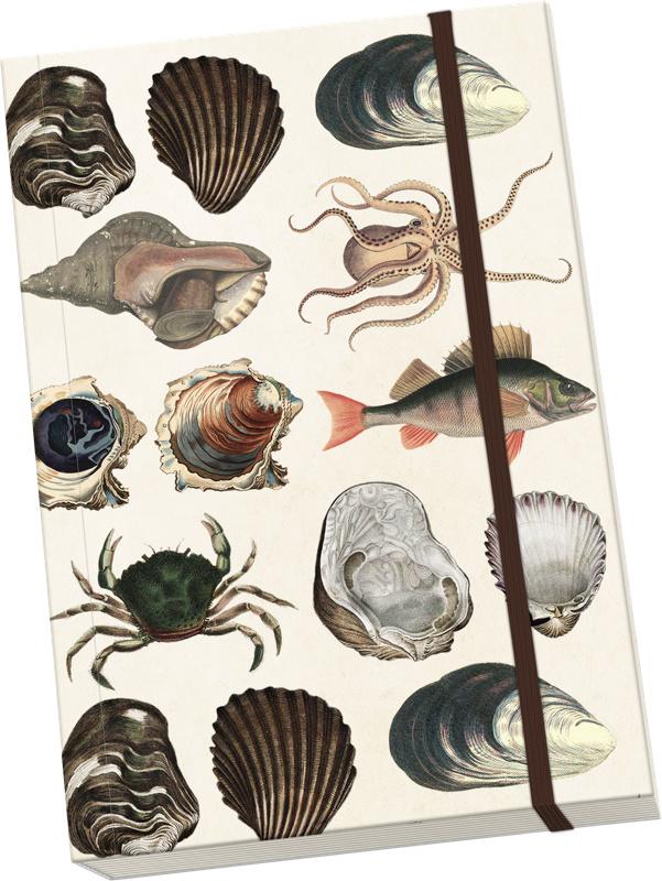 Notitieboek A5 'schelpen en zeedieren'