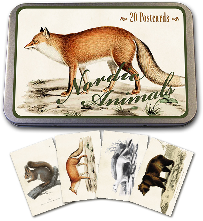 Blik met 20 kaarten (10 x 15 cm) 'nordic animals'