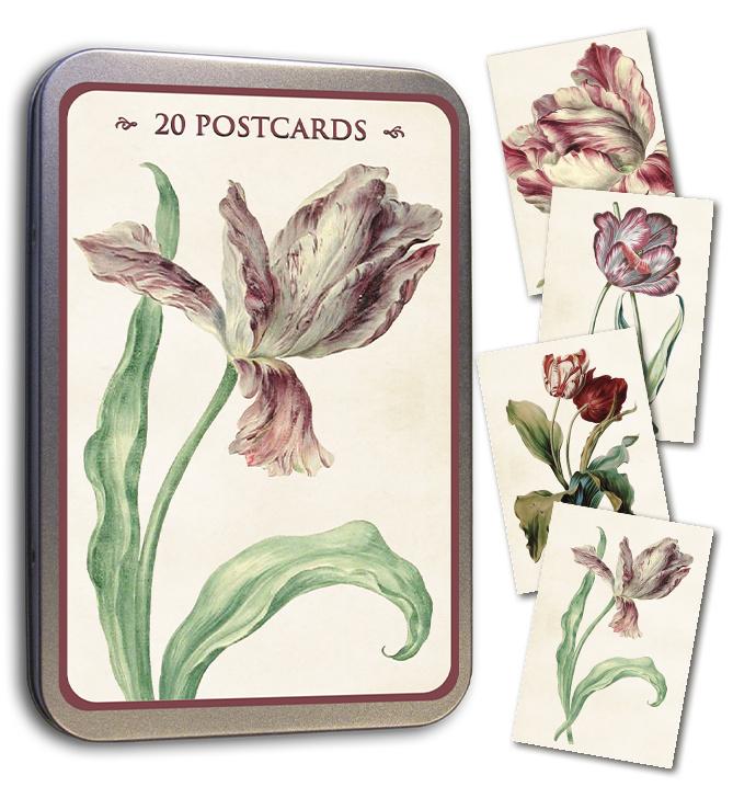 Blik met 20 kaarten (10 x 15 cm) 'tulp'