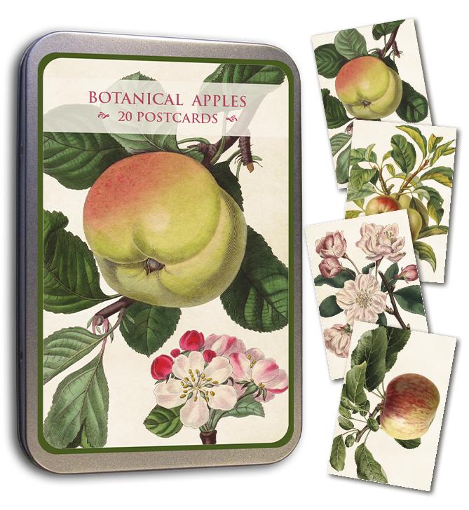 Blik met 20 kaarten (10 x 15 cm) 'appelbloesem'