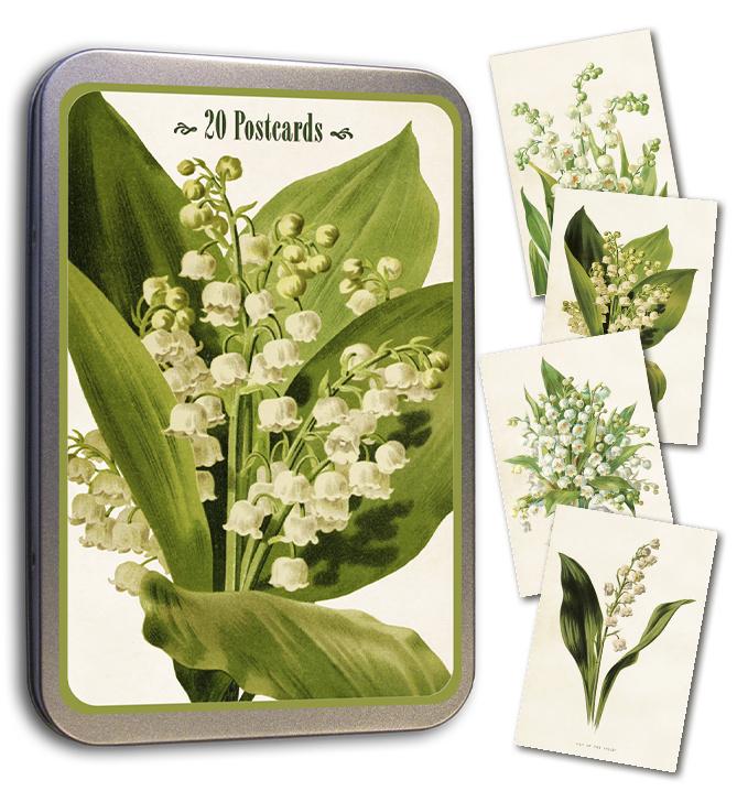 Blik met 20 kaarten (10 x 15 cm) 'lelietje van dalen'
