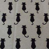 Schaduw Katjes