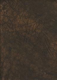 Brons Groen (9046)