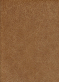 Artic  Licht Cognac (9067)