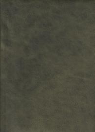 Artic Green (9027)