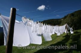 Pure Lamp[e] Geurstof Schone Wasjes