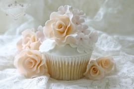 Vanilla Plus Roses