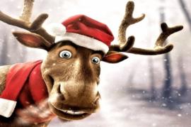 Rudolph Rocks L.Type